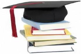 Graduation Project  Discussion